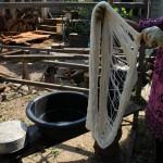 タイ生産者写真