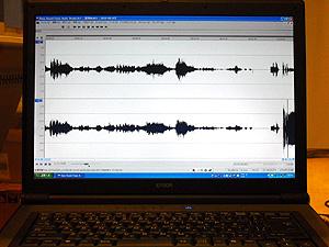 波形編集: SONY Sound Forge 7.0