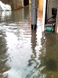 駒ヶ林の浸水