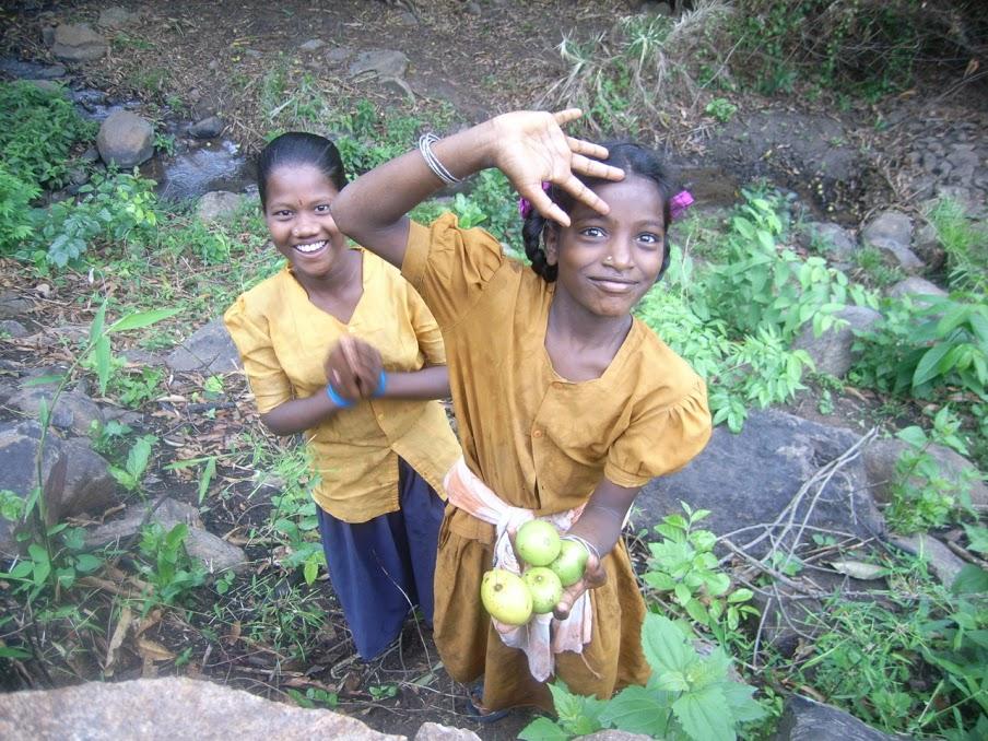 私の村のマンゴー